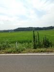 須賀川.jpg